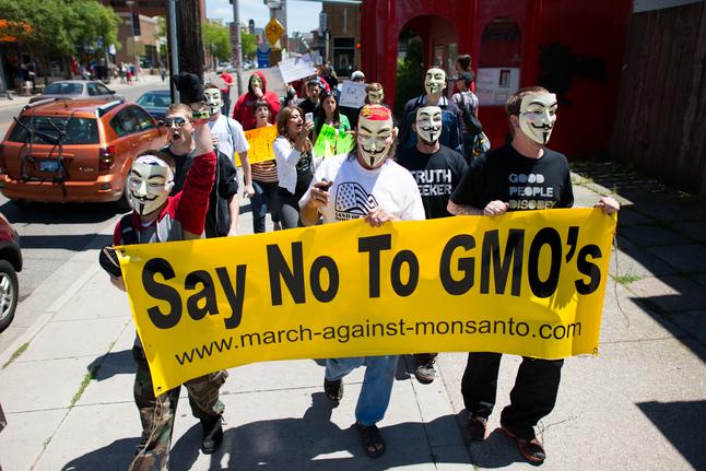 遺伝子組み換え作物に反対するデモの様子(画像はイメージです)